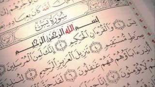 الشيخ نبيل الرفاعي   سورة يس   كامله