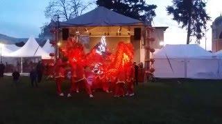 Tanec draka - Asian fest 2016