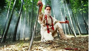 Best Chinese Martial Arts Chinese Action Comedy Movies