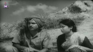 Nammina Bantu Telugu Full Length Movie || A.N.R, Savithri, S.V.R, Gummadi