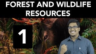 Geography: Forest and Wildlife Resources (Part 1)