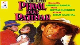 Phool Bane Patthar | Mohnish Bahl, Indrani Banerjee, Rakesh Bedi | 1998 | HD