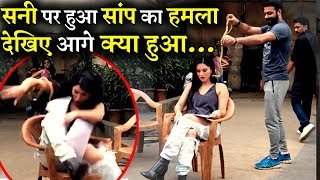 VIDEO: Sunny Leone Attacked by a Snake