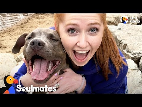 Xxx Mp4 Sick Girl Meets Dog Who Completely Changes Her Life The Dodo Soulmates 3gp Sex