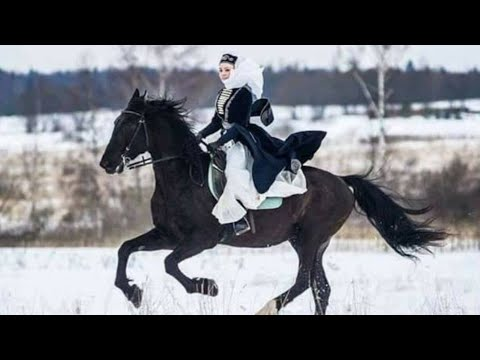 Horse 🎵 Dream