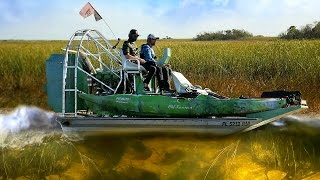 Airboat Ride in the Florida Everglades Among Alligators! w/ Scott Martin (Shotguns)