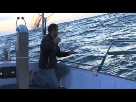 La pesca del calamar