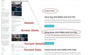 How to download movie torrent from shaanig.cc