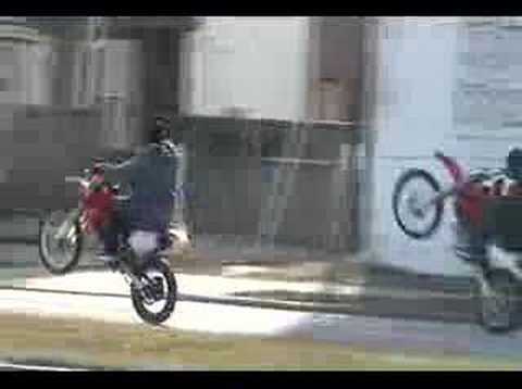 Wildout Wheelie Boyz