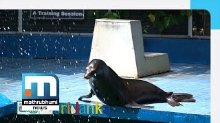 Sights And Smells Of Colombo Zoo| Yathra, Episode 180| Mathrubhumi News