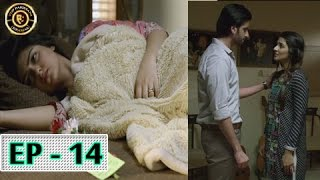 Tumhare Hain Episode 14 - 28th April 2017 - Top Pakistani Drama