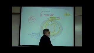 VESTIBULAR APPARATUS; the Anatomy & Physiology of Balance & Equilibrium by Professor Fink