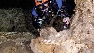 GoPro: Best Discoveries from The Underworld