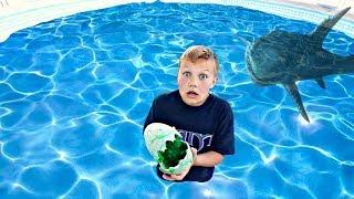 Huge Monster Laid Eggs in My Swimming Pool!