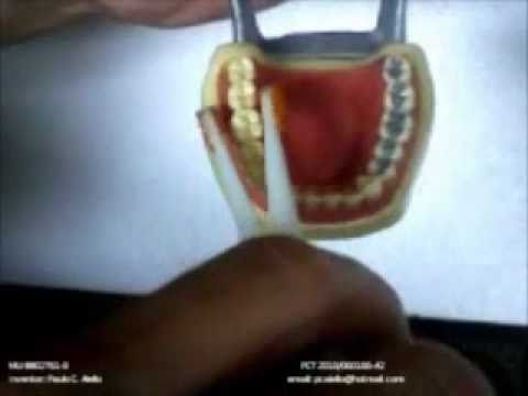 Limpeza dos Dentes e Higiene Bucal. Novo Aplicador de fio dental 5 em 1