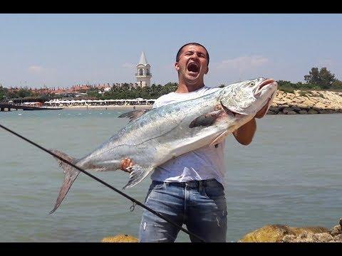 21,290 kg - Yeni Kıyıdan At-çek Türkiye Rekoru Akya Avı ( Landbased Record Leerfish )