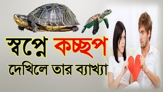 স্বপ্নে কচ্ছপ দেখিলে তার ব্যাখ্যা Dream explaination of Turtlein dream Shopner Tabir