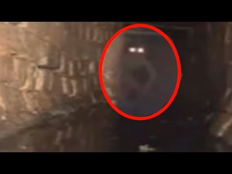 5 Mysterious Creatures Caught On Camera & Spotted In Real Life