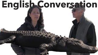 English Conversation - Learn American English with ALLIGATORS!