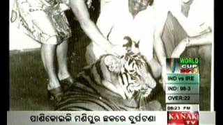 Review of Odia book Bagha Rani Khairi by Akhil Mohan Patnaik