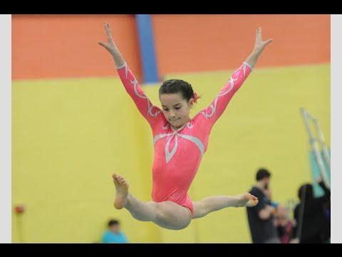 Annie the Gymnast   Level 7 State Gymnastics Meet 2015   Acroanna