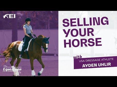 Xxx Mp4 Selling Your Horse Ayden S Hardest Decision My Equestrian Life 3gp Sex