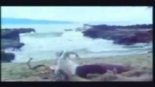 YouTube - Warkop DKI - Pintar Pintar Bodoh - Si Kodir.flv