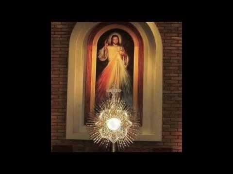 Ante tu presencia Canto Eucaristico
