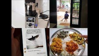South Indian Lunch Routine - Thengai Puli Kulambu - Vendaikkai Pachadi - YUMMY TUMMY VLOG
