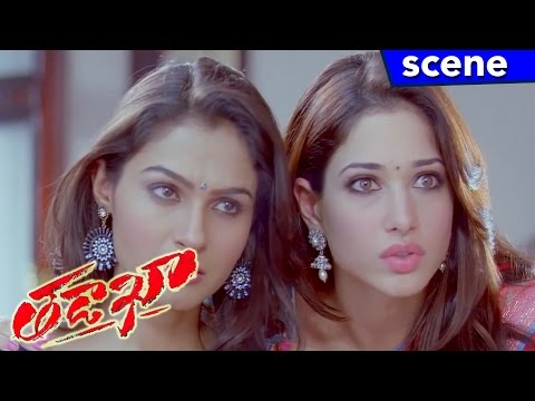 Naga Chaitanya Forced Sunil to Marry Andrea Jeremiah - Tadakha Movie Scenes