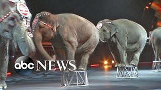 Ringling Brothers Circus Retires Elephant Act