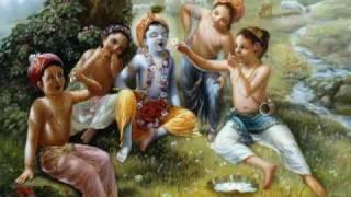 Hare Krishna Vaiyasaki das