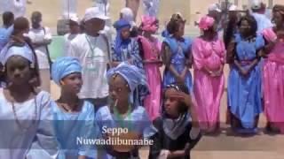 Festival de la diversité culturelle Défilé à Nouadhibou