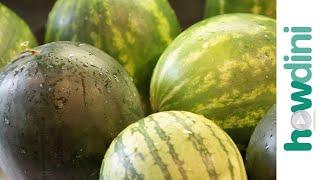 6 Ways to Cut and Serve Watermelon: Howdini Hacks