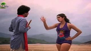 Sridevi Rare And Hot In Bikini To Show Rare Video