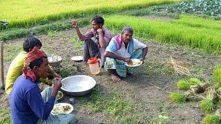গ্রামের ছোট ছোট মেয়েদের উকুন দেখা খোলামাঠে! Village small girl