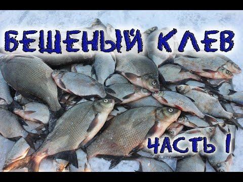 ветер для рыбалки на леща