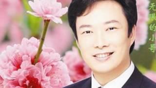 又见柳叶青--Original Singer: 费玉清