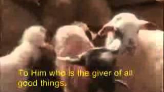 Sacrifice Bob Fitts  With lyrics