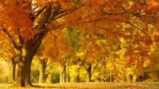 Golden Brown - The Stranglers