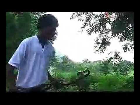 Xxx Mp4 Mura Kar Beti Moke Bhulai Bhanti Kurmali MP4 Song Johar Music 3gp Sex