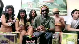 Snoop Dogg - Executive Branch