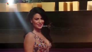 نجوم الفن في افتتاح مهرجان القاهرة السينمائي
