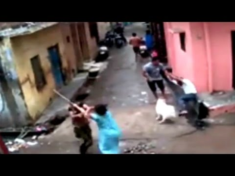 Caught on Camera: Brutal Fight of Neighbours Over Dirt in Faridabad