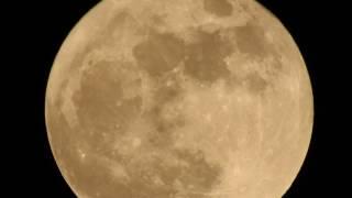 Nikon P900 Full Moon Tour - Super Zoom Test at 83x