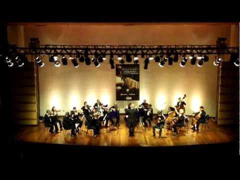 Renato Borghetti & Orquestra de Câmara de Blumenau Milonga para as Missões