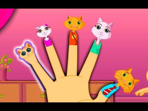 Xxx Mp4 The Finger Family Cat Family Nursery Rhyme Kids Animation Rhymes Songs 3gp Sex