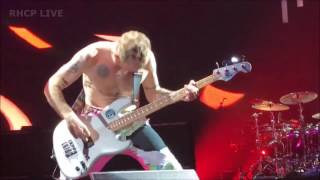 Red Hot Chili Peppers - Goodbye Angels - Columbia, SC (SBD audio)