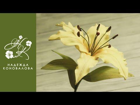 Как сделать красивую лилию из фоамирана - мастер класс - videosfortube Unblock Youtube