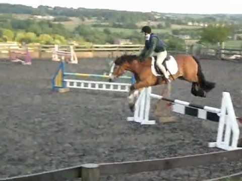 Xxx Mp4 Wonder Horse Xx 3gp Sex